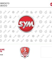 KIT VALIDO PARA REVISION 3/7/11/15 SYMPHONY125 E4